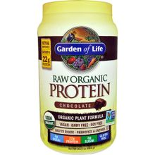 Garden of Life RAW Organic Protein Chocolate - 23.4 oz