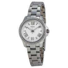 Fossil AM4576 Cecile Womens Silver Dial Analog Quartz Watch
